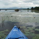 gallery-n-kayak-main