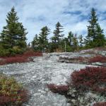 gallery-n-trailhead-peak