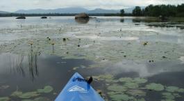 Hiking Biking and Kayaking